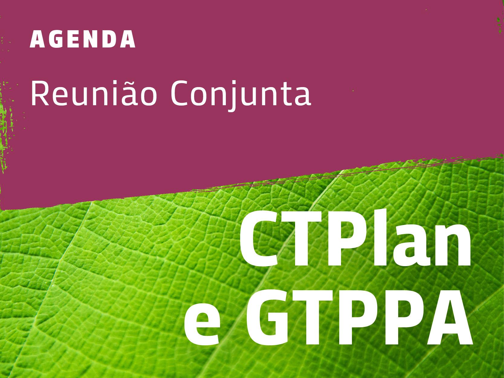 1ª Reunião Conjunta de 2021 do GTPPA e CTPlan do CBH Araguari